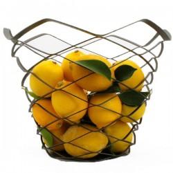 Frutero de Acero